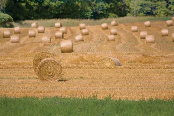 Farm safety part of farming legacy